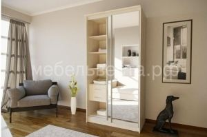 Шкаф-купе Раум 1,1 - Мебельная фабрика «Веста»