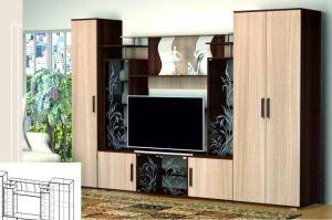 Гостиная ЛДСП 12 - Мебельная фабрика «А-Элита»