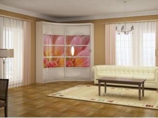 Радиусный шкаф-купе Нарайна 2 - Мебельная фабрика «Альбина»