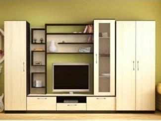Большая гостиная стенка со шкафом №3 - Изготовление мебели на заказ «Мебель для вашего дома»