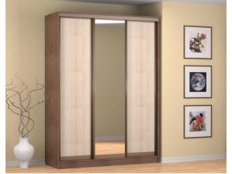 Шкаф-купе Альянс 1,6 м - Мебельная фабрика «Премиум»