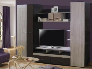 Гостиная со шкафом Вега  - Мебельная фабрика «Мебельный комфорт»