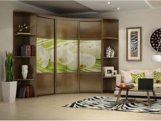 Радиусный шкаф-купе Нарайна 9 - Мебельная фабрика «Альбина»