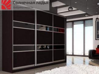 Шкаф - купе для гостиной 5 - Мебельная фабрика «Солнечная ладья»