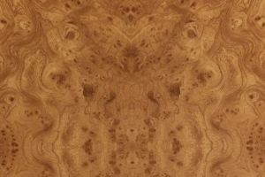 Декоративный пластик CPL Wood 3106/S Корень вяза - Оптовый поставщик комплектующих «Slotex»