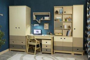 Детская Робин Wood 3 - Мебельная фабрика «38 попугаев»