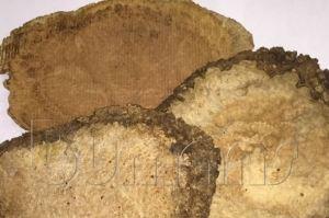 Доска необрезная Амбойна (Корень) - Оптовый поставщик комплектующих «Буманс»