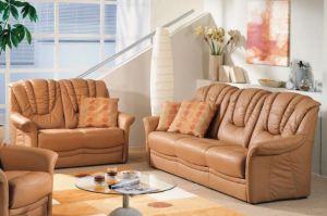 Двухместный кожаный диван Senta - Импортёр мебели «Рес-Импорт»