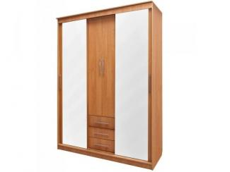 Шкаф-купе Натали 13 - Мебельная фабрика «Мельбурн»