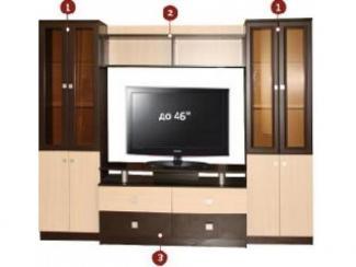 Гостиная стенка ТВ-22 Комплектация С