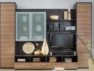 Гостиная стенка - Изготовление мебели на заказ «Атташе», г. Саратов