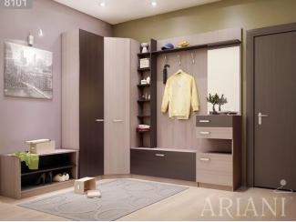 Прихожая Адора 1 - Мебельная фабрика «Ариани»