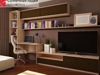 Шкаф - купе для гостиной 13 - Мебельная фабрика «Солнечная ладья»