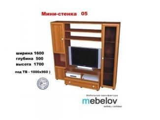 Мини-стенка 05 - Мебельная фабрика «МЕБЕЛов»