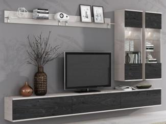 Гостиная стенка  Freestyle-5 - Мебельная фабрика «Фарес»