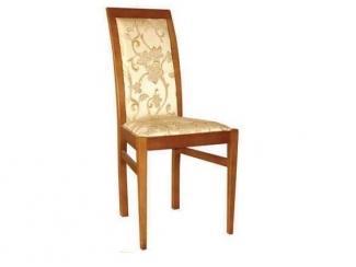 Стул Кавалер-006 - Мебельная фабрика «Ногинская фабрика стульев»