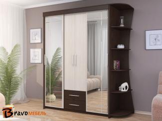 Шкаф-купе Хилтон - Мебельная фабрика «Bravo Мебель»
