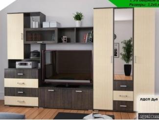 Мебель для гостиной со шкафом Валенсия 2