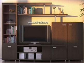 Гостиная стенка Элегия - Изготовление мебели на заказ «Орион»