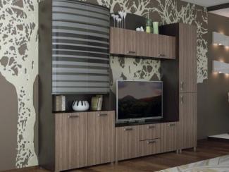 Гостиная стенка Амина - Мебельная фабрика «Северин»