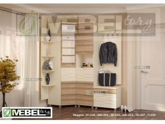 Прихожая модульная Альфред 7 - Мебельная фабрика «Мебель Тори»