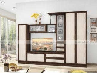 Гостиная Поло 8 - Мебельная фабрика «Астрид-Мебель (Циркон)»