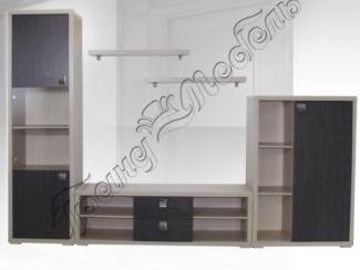 Гостиная стенка Дельта-21 - Мебельная фабрика «Гранд-мебель»