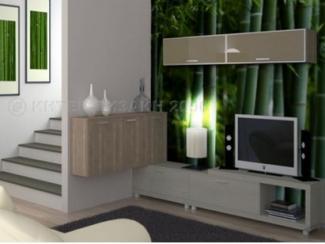 Гостиная plancha - Мебельная фабрика «Интер-дизайн 2000»
