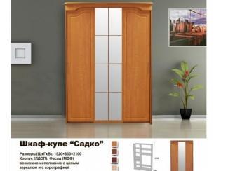 Шкаф-купе Садко - Мебельная фабрика «Мебельный комфорт»