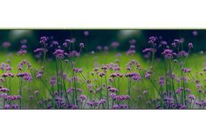 Фартук кухонный Цветы 1.26 - Оптовый поставщик комплектующих «Алмаз»