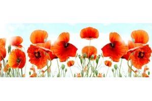 Фартук кухонный Цветы 1.28 - Оптовый поставщик комплектующих «Алмаз»