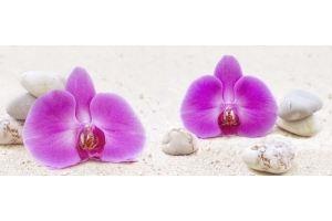Фартук кухонный Цветы 1.38 - Оптовый поставщик комплектующих «Алмаз»