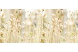 Фартук кухонный Цветы 1.48 - Оптовый поставщик комплектующих «Алмаз»