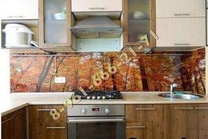 Фартук кухонный стеклянный 020 - Оптовый поставщик комплектующих «Стеклодом»