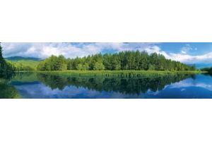 Фартук кухонный стеклянный 0283-14 - Оптовый поставщик комплектующих «Глобал»