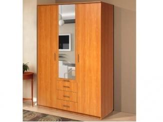 Распашной шкаф-7