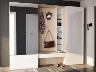 Мебель для прихожей Passage - Мебельная фабрика «ОГОГО Обстановочка!»