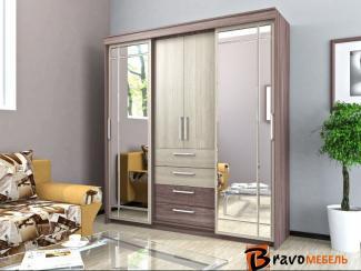 Шкаф-купе Хилтон 2 - Мебельная фабрика «Bravo Мебель»