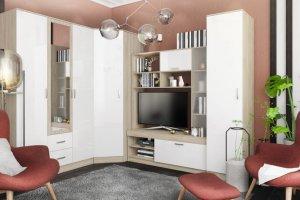 Гостиная модульная угловая Софи - Мебельная фабрика «ДСВ-Мебель»