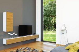 Гостиная по телевизор - Мебельная фабрика «Ре-Форма»