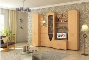 Гостиная стенка Айко - Мебельная фабрика «Сергачская»