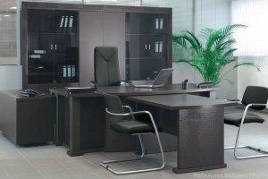 Кабинет руководителя 12 - Мебельная фабрика «Триана»