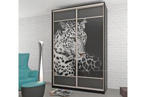 Шкаф-купе с фотопечатью Канди - Мебельная фабрика «Мебель Поволжья»