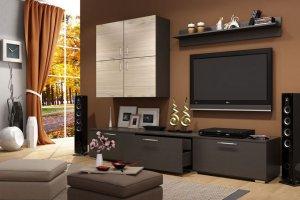 Компактная гостиная 14 - Мебельная фабрика «SaEn»
