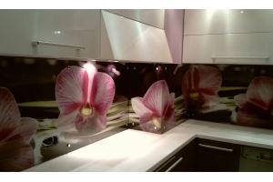 Кухонный фартук 8 - Оптовый поставщик комплектующих «Студия Художественного Стекла и Мебели»