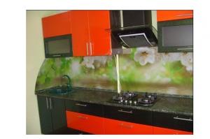 Кухонный фартук из стекла 44 - Оптовый поставщик комплектующих «Glass Master»