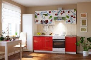 Кухонный гарнитур 2,10 м - Мебельная фабрика «РиАл 58»