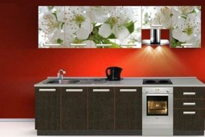 Кухонный гарнитур с фотопечатью Цветы - Мебельная фабрика «Профи»