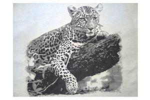 Купон ткань Леопард - Оптовый поставщик комплектующих «АГАТ»