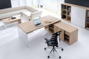 Мебель для кабинета Рейс - Мебельная фабрика «Виктория»